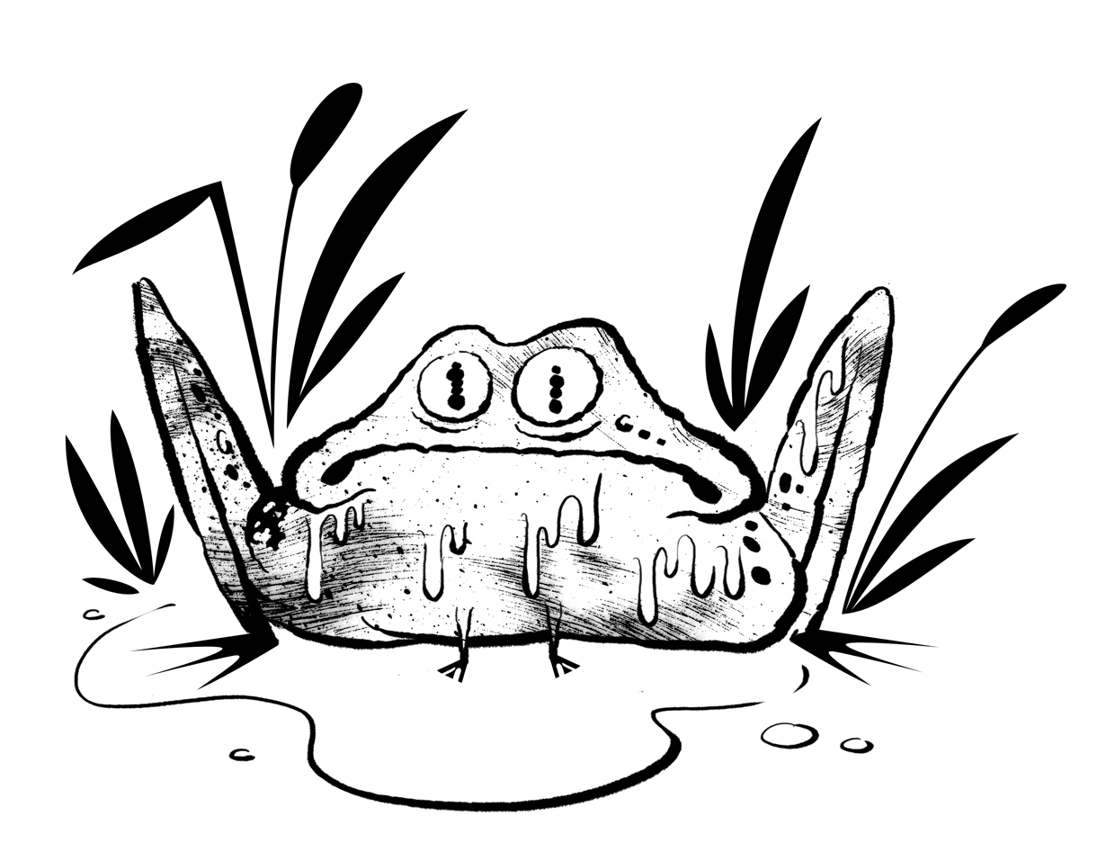 Free swamp animals coloring pages for Swamp animals coloring pages