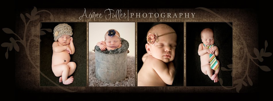 Aimee Fuller Photography - Newborn Baby Child Children & Family Photographer Pearland TX