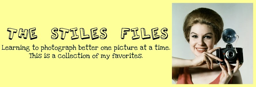 The Stiles Files