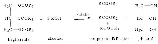 Reaksi transesterifikasi molekul minyak