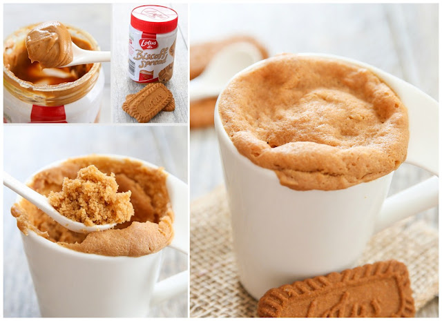 4 Ingredient Cookie Butter Mug Cake