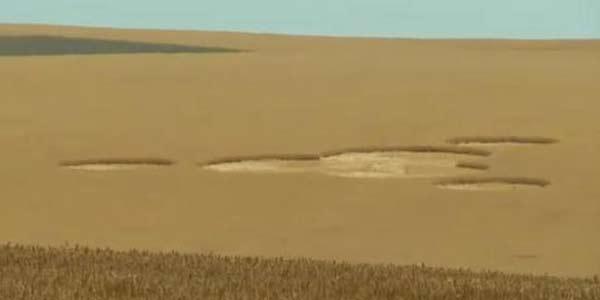 Crop Circle Muncul Di Ladang Gandum Amerika [ www.BlogApaAja.com ]