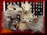 .Year of the Rat:  2020!
