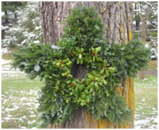 wholesale christmas trees wreaths greenery - Christmas Greenery Wholesale