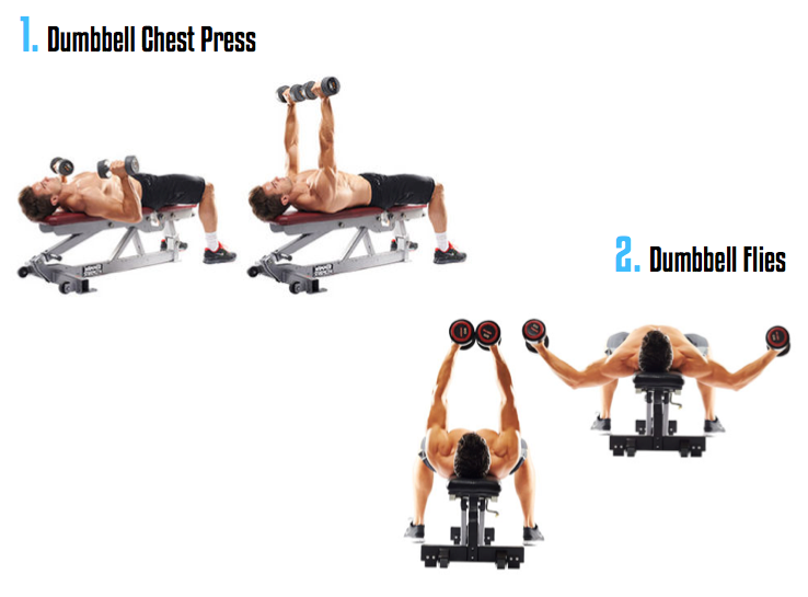 Best Chest Workout Routine - Muscle and Fitness