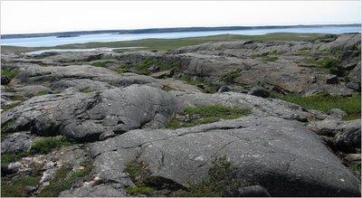 Batu Tertua di Dunia 3 - [www.zootodays.blogspot.com]