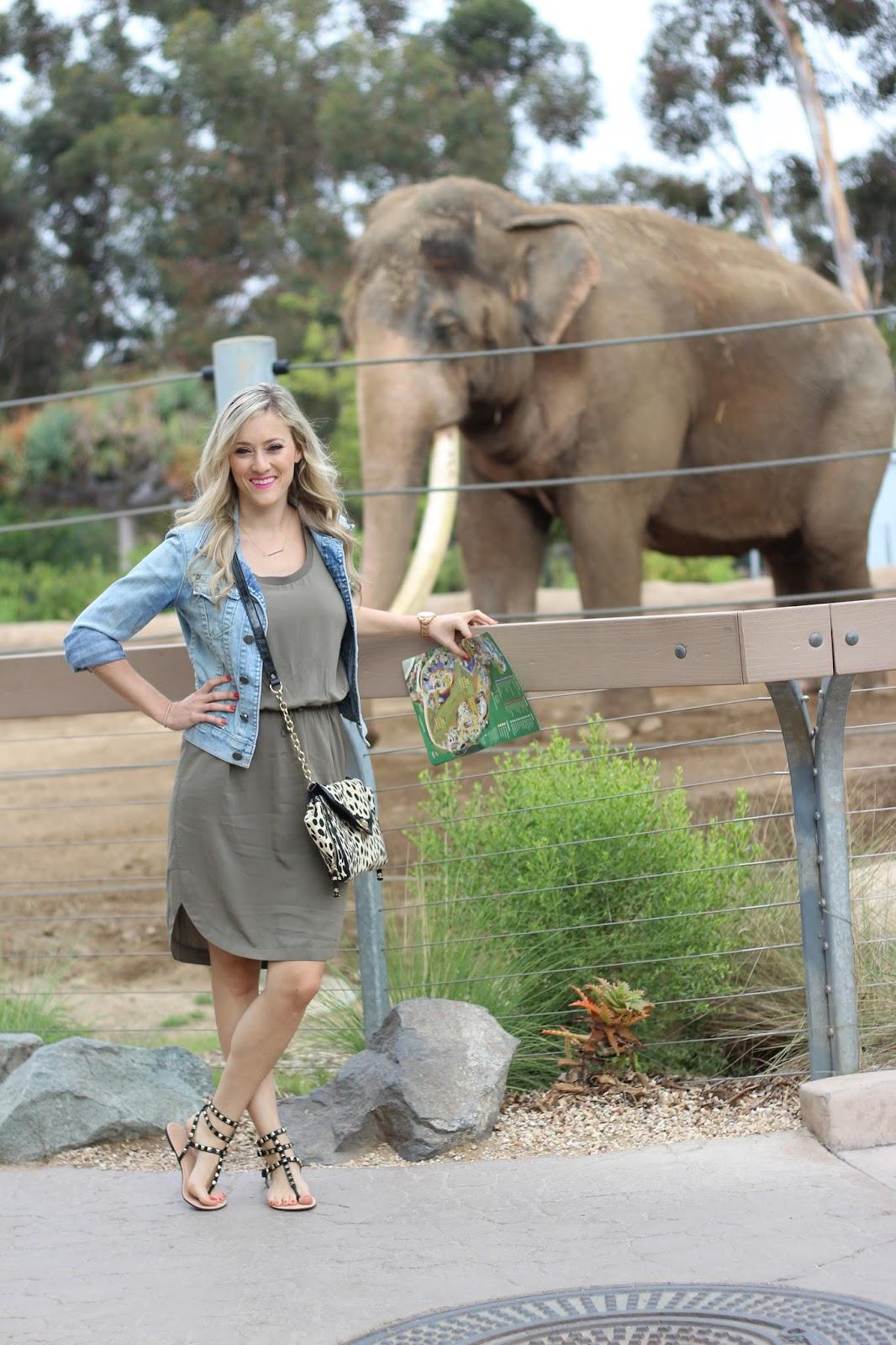 San Diego Zoo Outfit - She Said He Said