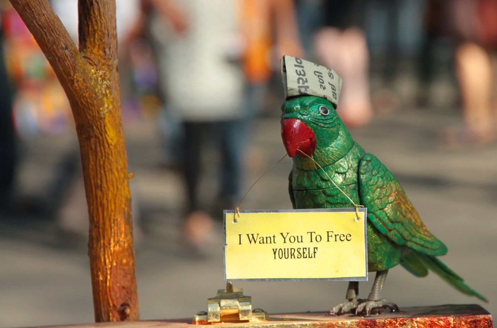 metal, bird, sign, political, india, kala ghoda, mumbai