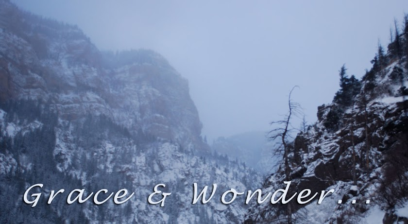 Grace & Wonder
