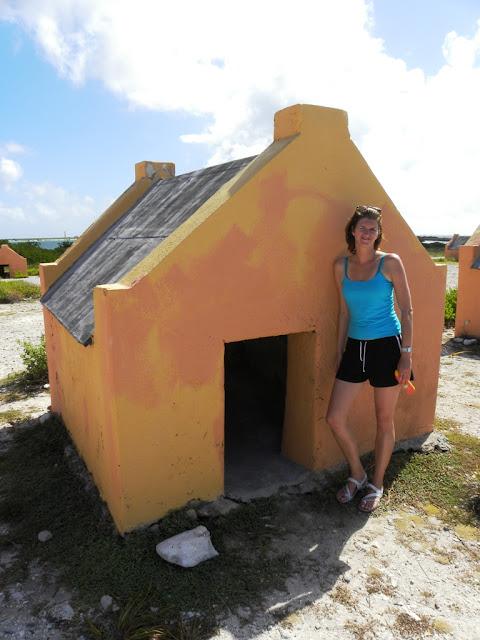 Salt Fields Bonaire