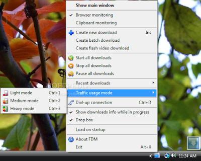برنامج التحميل من رابيدشير بسرعة عالية Rapidshare Auto Downloader 4.1