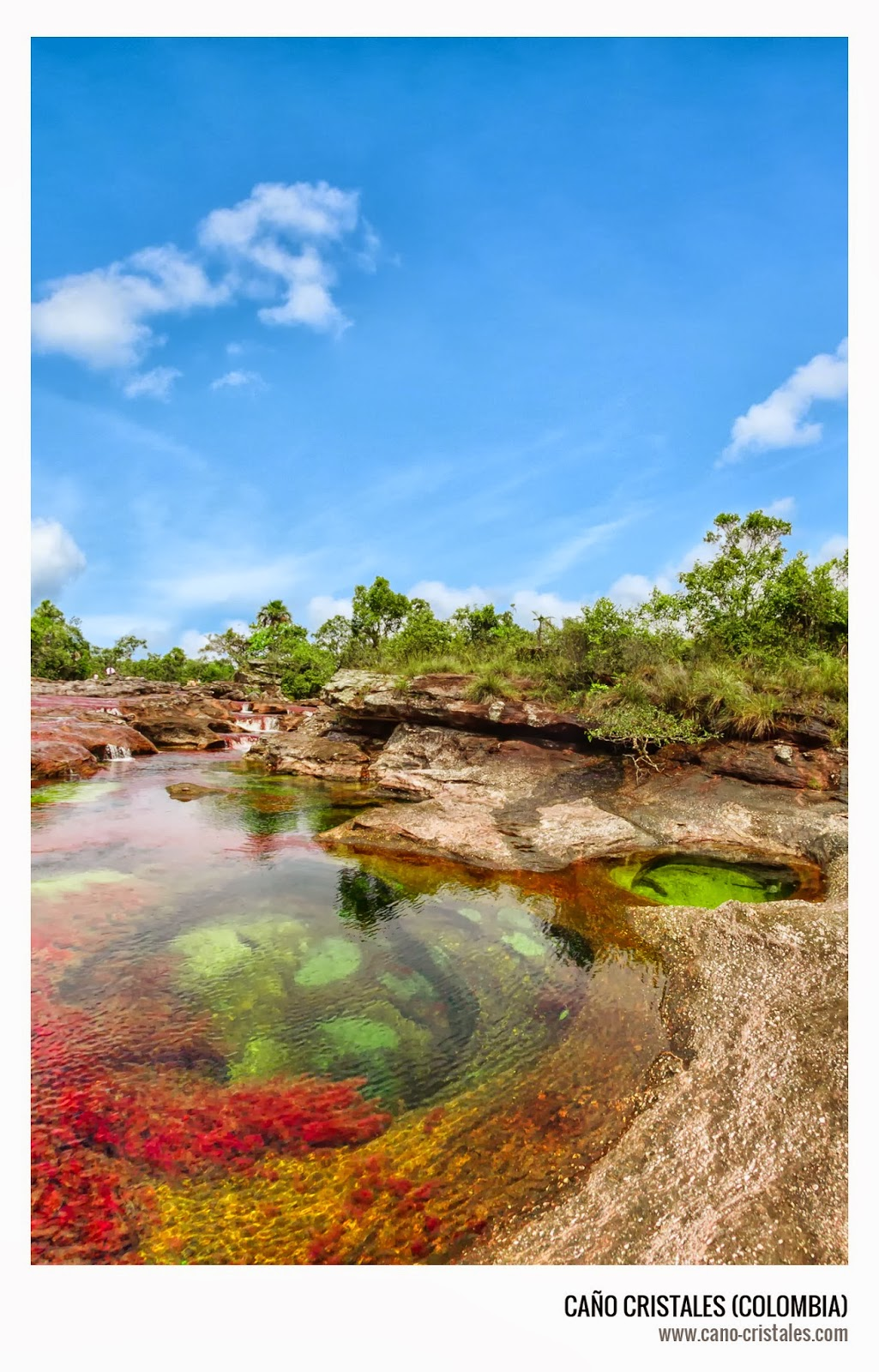 Caño Cristales, jacuzzis naturales de colores