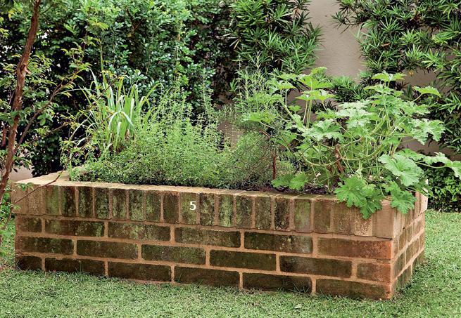 Uma horta elevada, ajuda na manutenção e também nahora de colher os