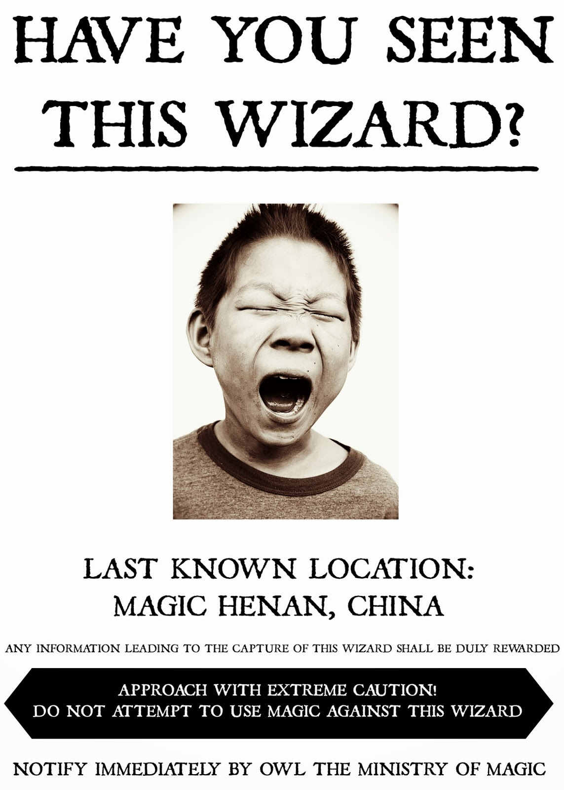 AFTERNOON FIKA DIY HARRY POTTER WANTED POSTERS – Wanted Criminal Poster