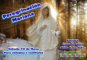 Peregrinación Mariana al Cristo del Sahúco