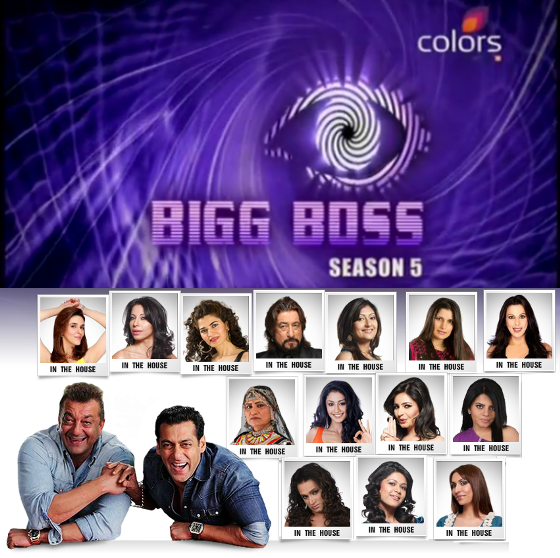 Bigg boss 5 contestants