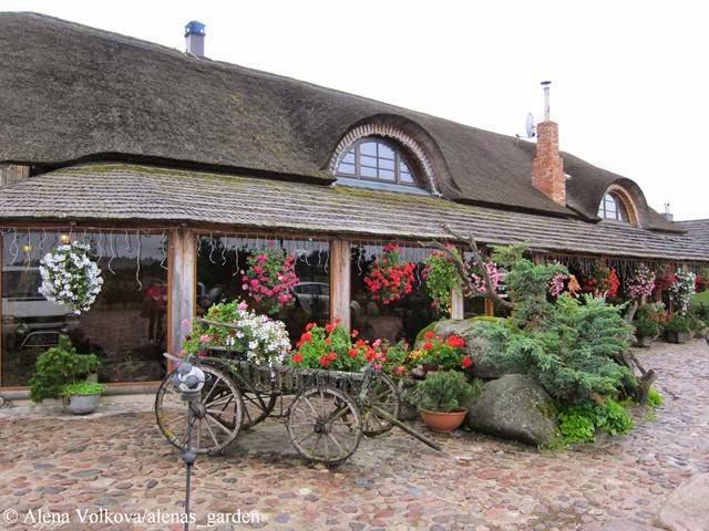 корчма в Литве, деревенский стиль, герань в кашпо, растения в подвесных кашпо, деревянный дом, светильник, старые колеса, на стене, корыта на стене, брусчатка, каменный двор, телега, телега с геранью