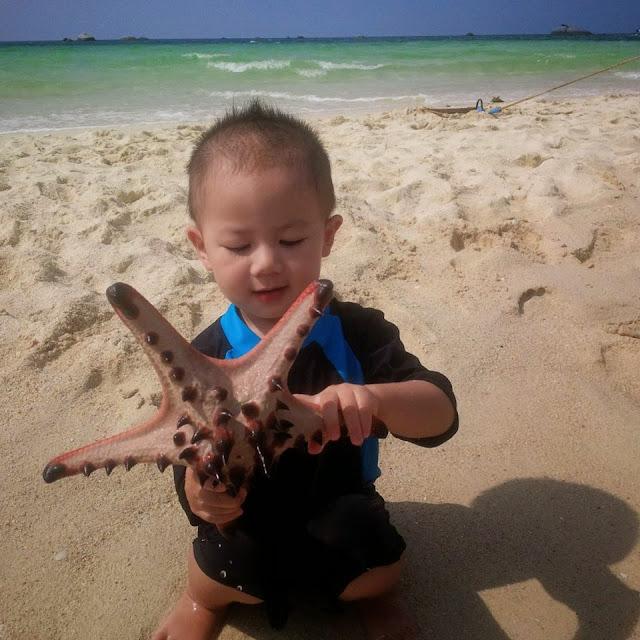 Keponakan gw ga mau melepaskan bintang laut kesayangannya