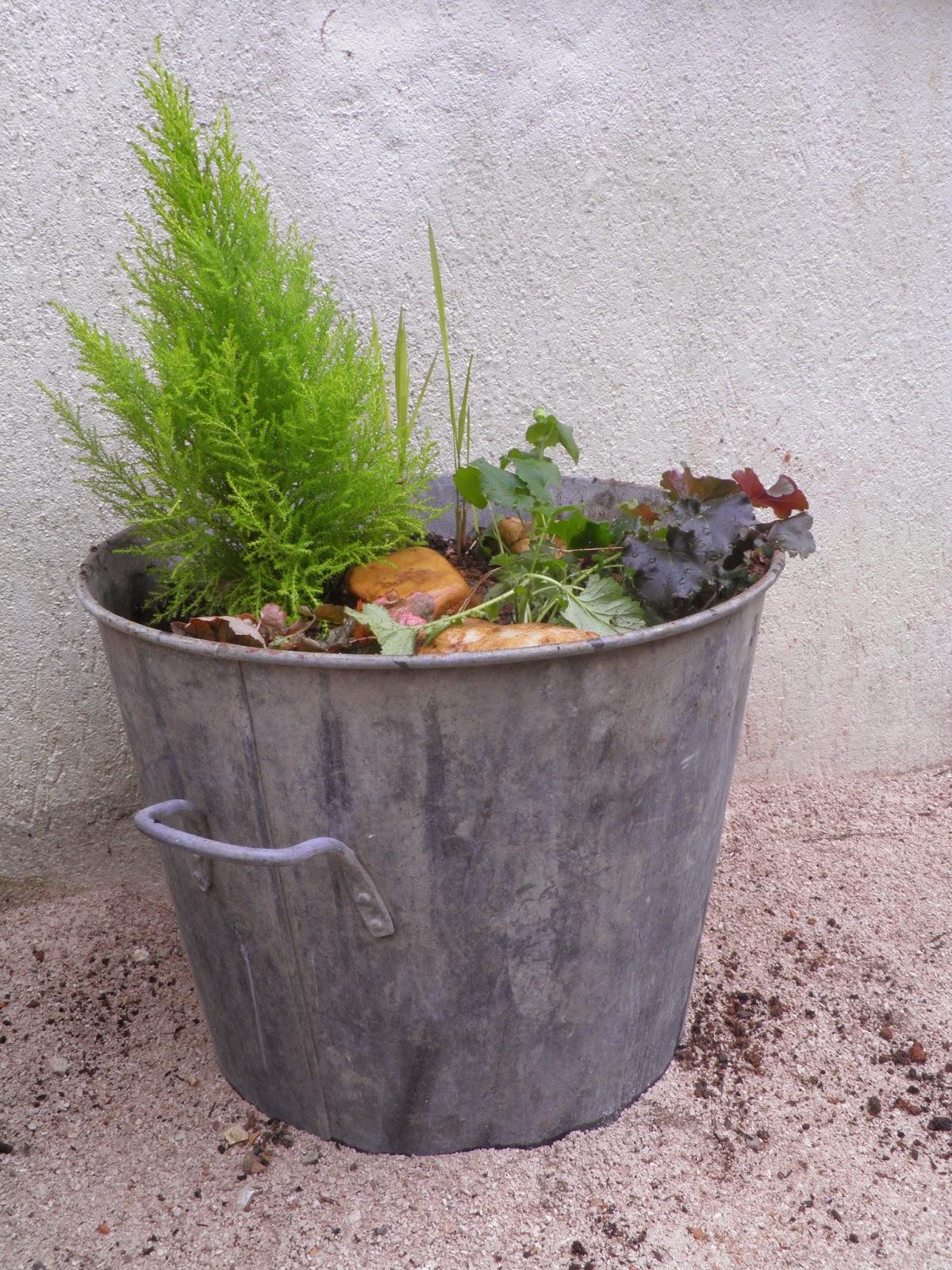 Mon Jardin Quercynois Une Deuxi Me Vie Pour La Lessiveuse