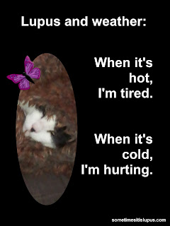 Image of cat snuggled in furry blanket.  Text: Lupus and weather. When it's hot, I'm tired. When it's cold, I'm hurting.