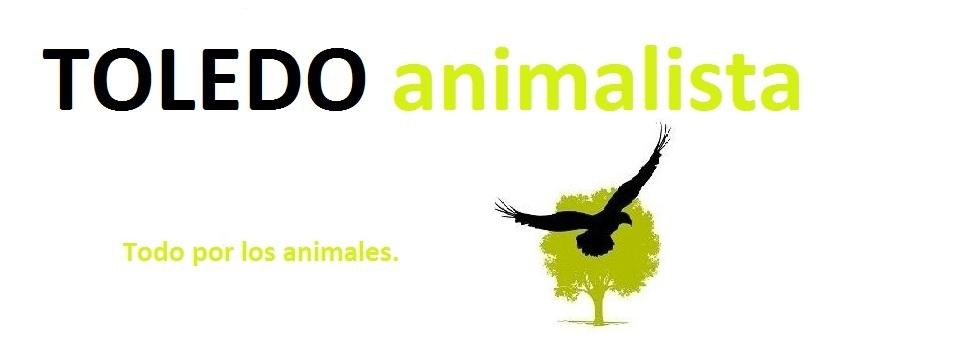 Grupo Animalista de Toledo
