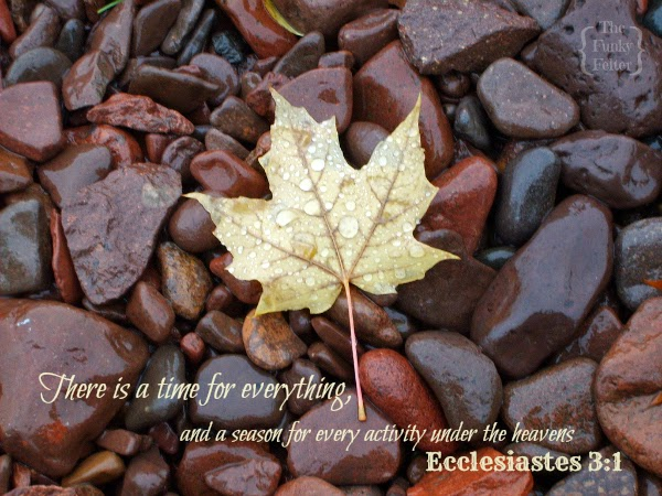 ecclesiastes 3 bible verse about seasons with photo by the funky felter