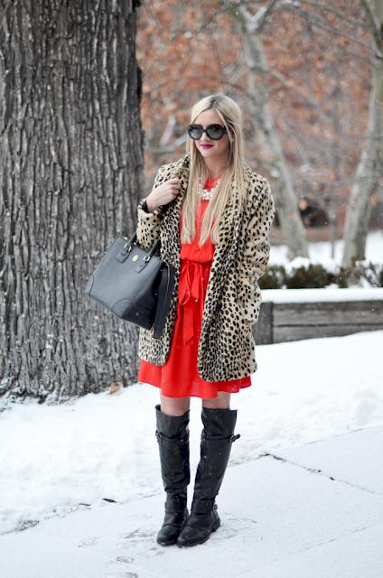 Leopard coat,Red dress,Black boots and handbag