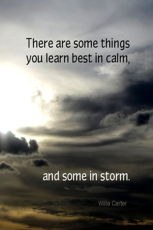 visual quote - image quotation for LEARNING - There are some things you learn best in calm, and some in storm. - Willa Carter