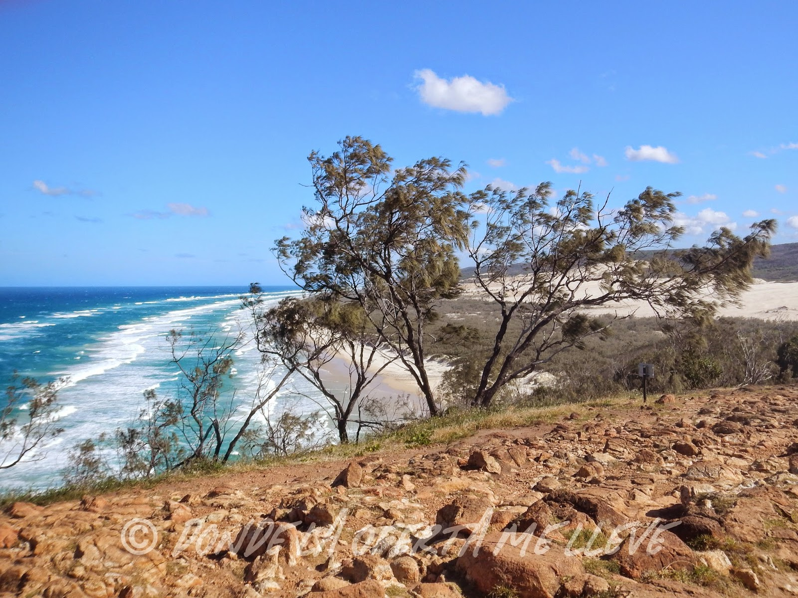 Fraser Island Tour From Noisa