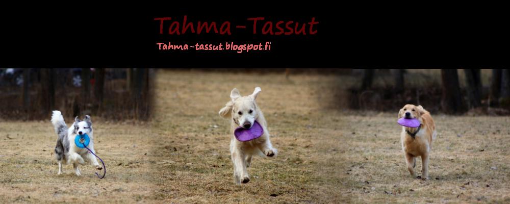Tahma-Tassut