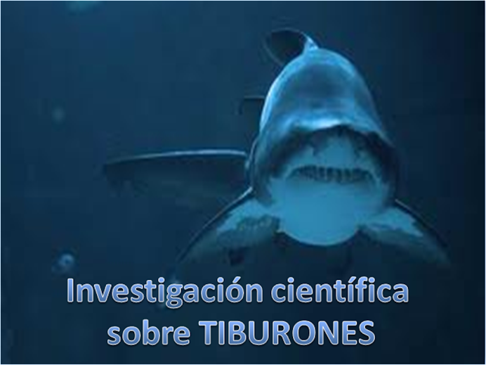 Investigacin cientfica sobre TIBURONES