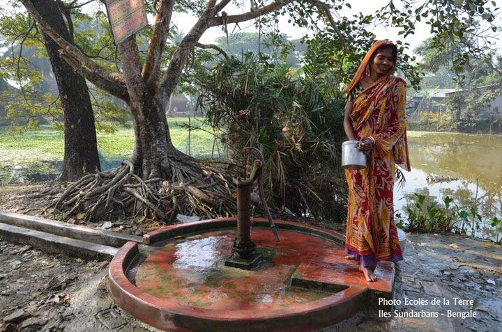 Île de Purba Jata - Bengale