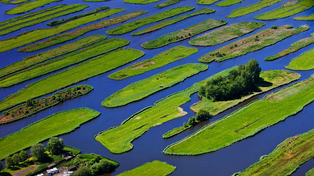 The polder landscape near Jisp, Netherlands (© Frans Lemmens/Alamy) 664