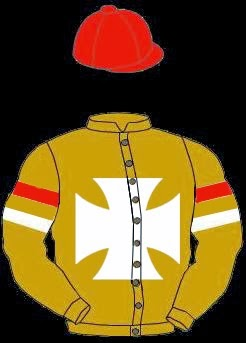 Gainsville Stud's Racing Silks
