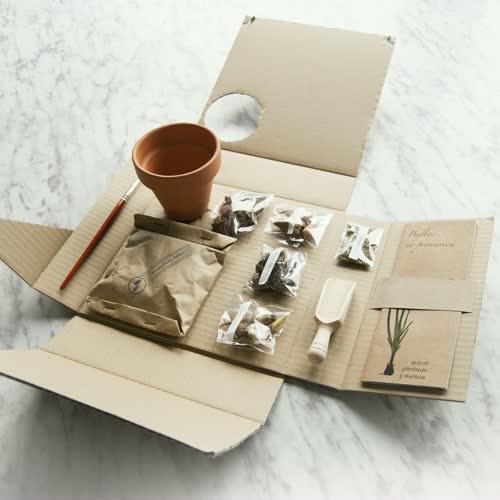 Kit jardinería de Fábrica de Texturas