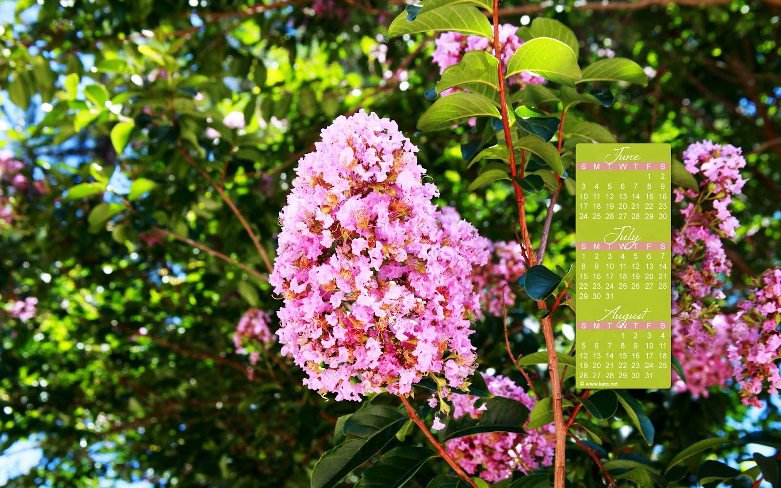 http://1.bp.blogspot.com/-oxaM8GdMmoM/T-6YSnGv_oI/AAAAAAAAGXI/wxyPKn4yDuM/s1600/katenet-july2012a_1920.jpg