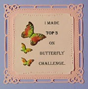 Top 3 @ Butterfly Challenge 8th April