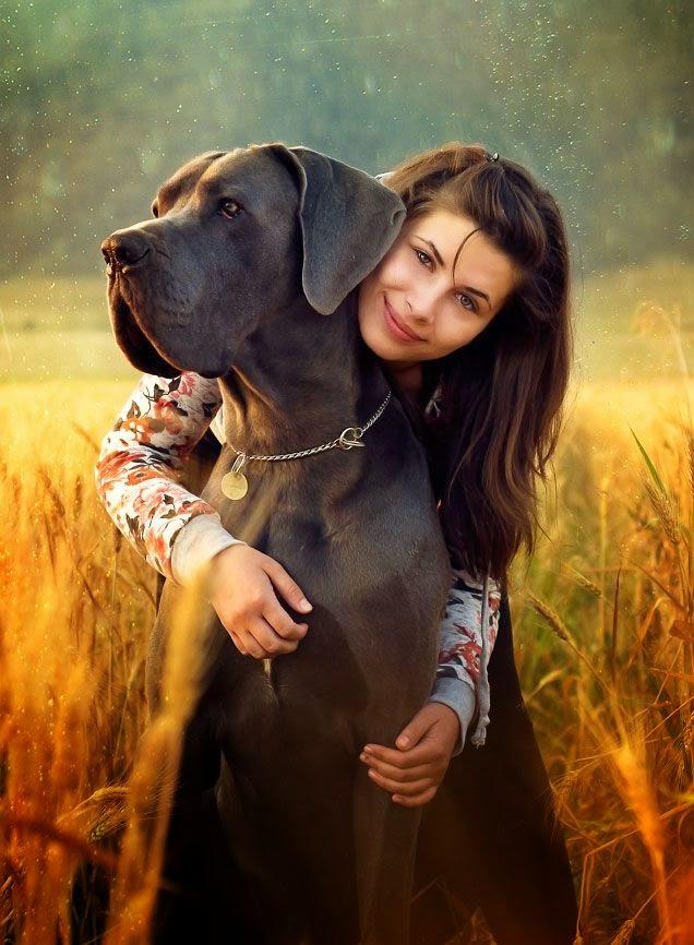 10 Most Amazing Dog Photographs Around From World