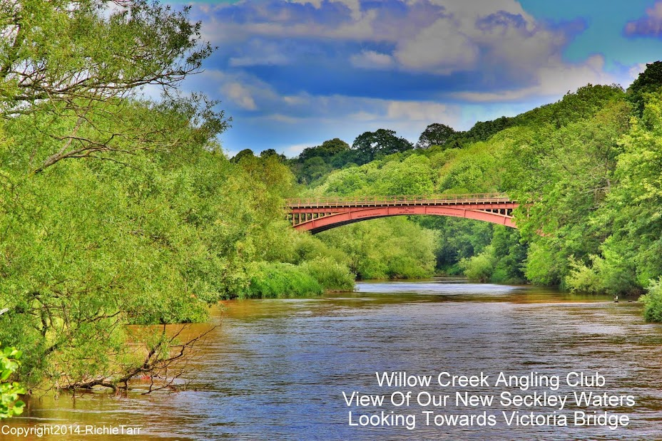 Willow Creek Angling Club - River Severn Bewdley