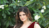 Zarine khan promoting hate story 3 glamorous photos in saree
