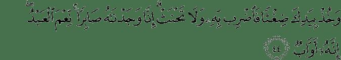 Surat Shaad Ayat 44