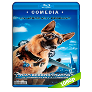 Como perros y gatos 2: La venganza de Kitty Galore (2010) Full HD 1080p Audio Dual Latino-Ingles
