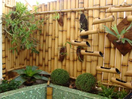 Arquitetura e paisagismo - Tipos de bambu ...