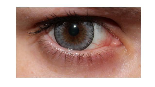 circle-lens-bodeal