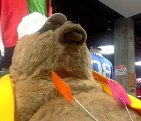 Derpy Bear Wears a Hat