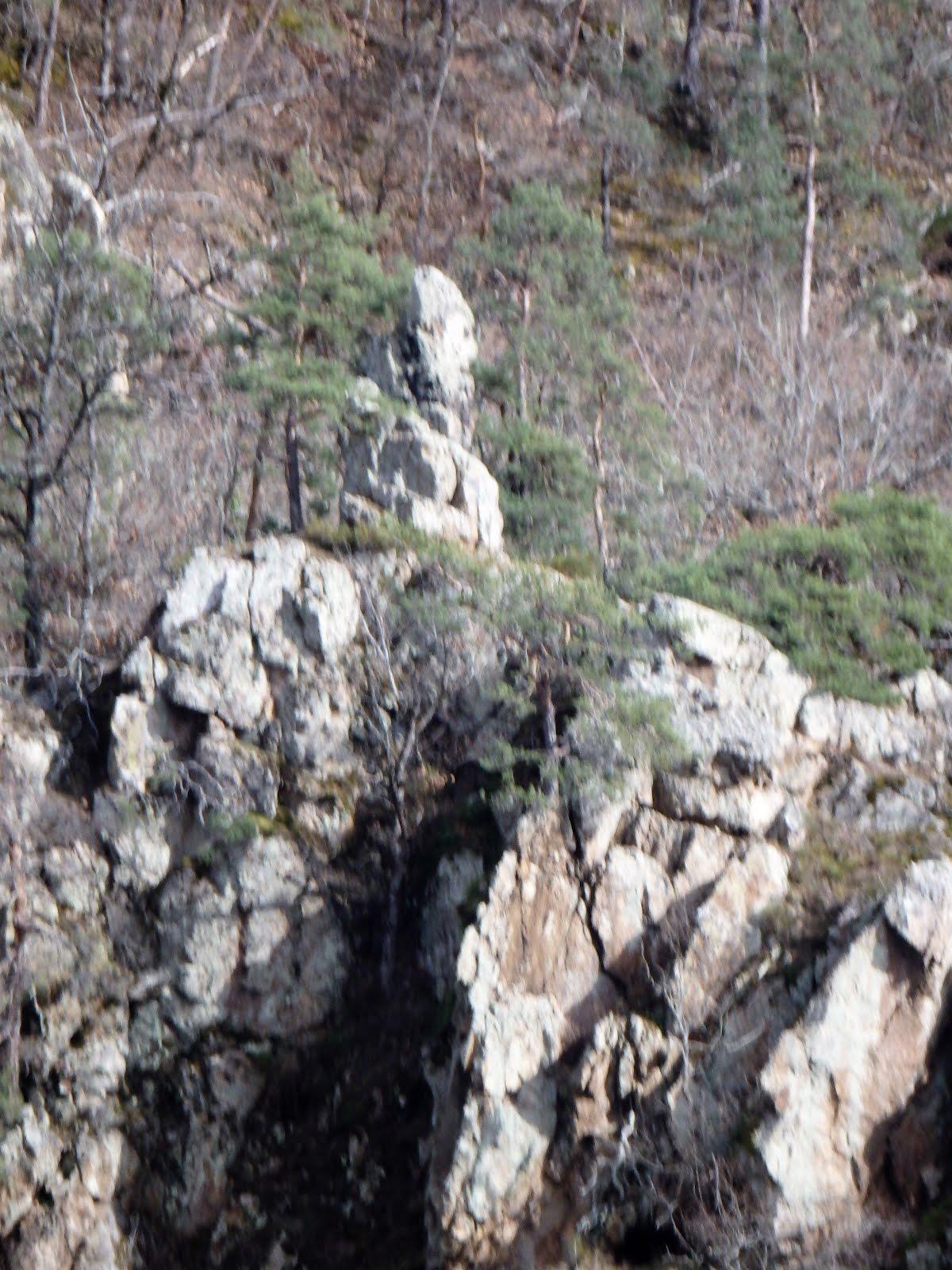 La dentellière sur son rocher