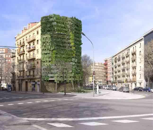 Jardines Verticales Tapices Verdes En La Ciudad Taringa
