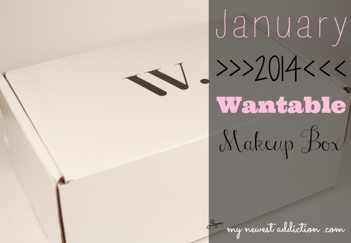 wantable january 2014 makeup subscription box