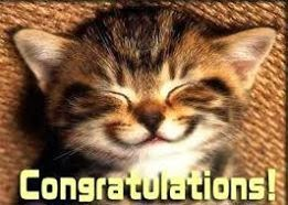 Congratulations -  Smiling funny cat face