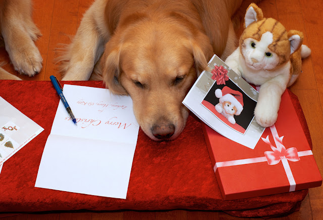 what to write in christmas cards for family
